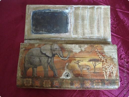 Вид спереди (слоны) фото 3