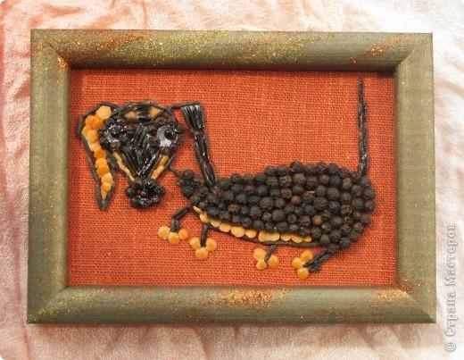 Черепаха и стрекозка фото 4