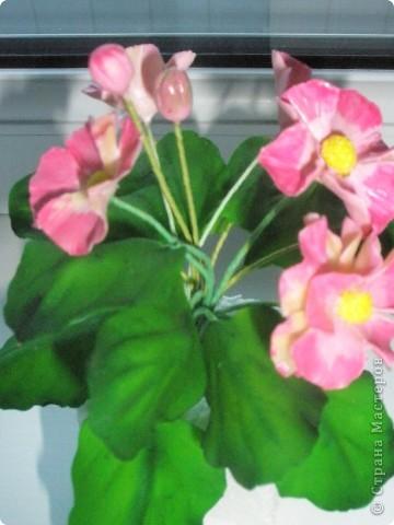 Мои первые пробы из холодного фарфора Сакура фото 9