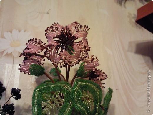 Поделка изделие Бисероплетение Орхидея Бисер фото 2.