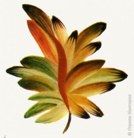 """Листья в петриковской росписи очень разнообразны, как и в природе, но не натуралистичны, а декоративны. Различаются они по форме, цветовой гамме, способам выполнения и """"оживления"""". Под """"оживлением"""" понимается оформление листка или цветка более мелкими деталями, то есть его украшение, доведение декоративности до совершенства.  Здесь есть каноны, но каждый мастер может применить свой прием оживления деталей рисунка.    Известны три основных вида листьев. 1.Многозубчатый овально-удлиненной формы.  2.Кленовый или виноградный лист.  3.Лист папоротника (акантовый).    Первый вид является наиболее распространенным. Выполняется он следующим образом : на круглую кисть набирается 2 оттенка или цвета (см. подробнее о переходном мазке в""""Секретах росписи"""",часть 1) и проводится центральный удлиненный мазок ( его направление зависит от места в композиции). Этот мазок может быть прямым или с поворотом, как в нашем примере. Последующие (также переходные) мазки рисуются поочередно с одной и другой стороны, придавая изображению форму листка. Середина его, как видно, оживлена более темным цветом при помощи кошачьей кисточки.Другой очень распространенный прием оживления - процарапывание центрального контрастного мазка острым концом древка кисти или чем-нибудь другим (деревянной зубочисткой, например). фото 2"""