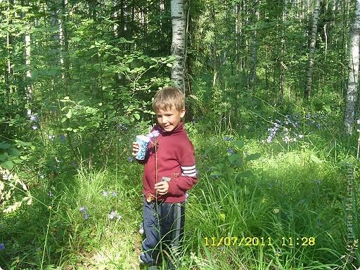 Ну и что что у нас кругом болота-зато ягод всяких....это морошка фото 12