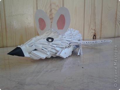 Работала в лагере , вела кружок оригами. Вот такие поделки у нас получились! Огромное спасибо всем кто создает свои МК, они очень помогают в работе!!! фото 13