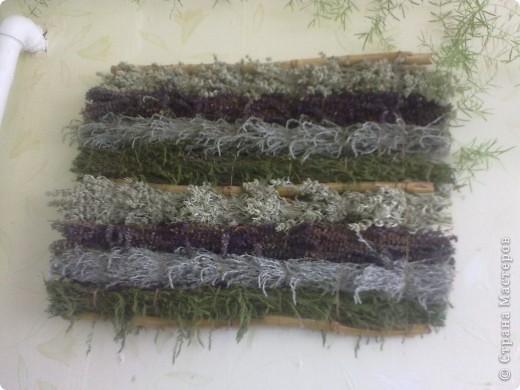Коллаж из степных трав фото 1