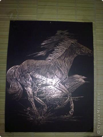 Лошадь на медной бумаге