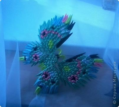 Бабочка :) фото 4