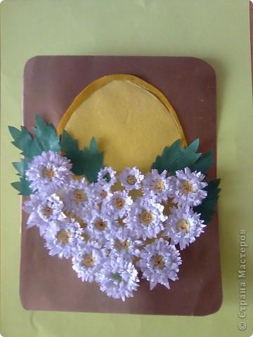 Хризантемы для мамочки