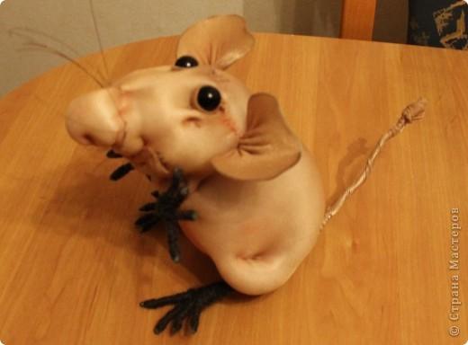 Мои новыи мыш! фото 2