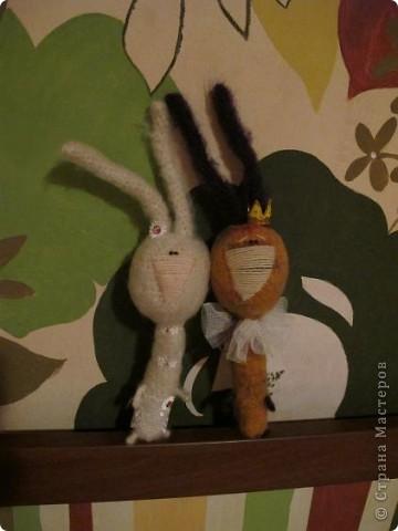 Вот они - мои долгожданные кролы! Принц Маук и его возлюбленая Мая! Они ехали долго, но даже не притронулись к конфеткам, которые им положили в дорогу. Вот это настоящая любовь!)))) фото 4
