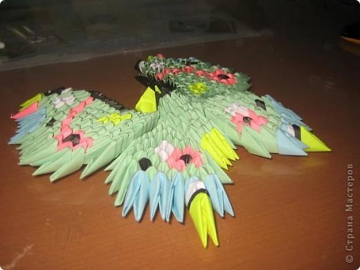 Бабочка :) фото 2