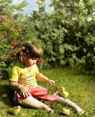 Коллаж называется Угощайтесь! (Летнее утро из мира детства) фото 1