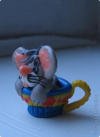 тигра с предложением)))) фото 25