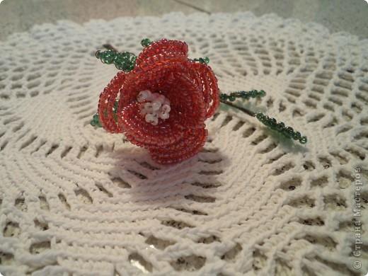 Дорогие жители страны мастеров выставляю первые свои розы. фото 2