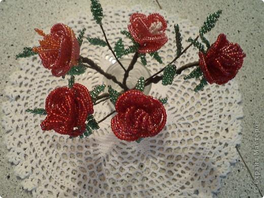 Дорогие жители страны мастеров выставляю первые свои розы. фото 3
