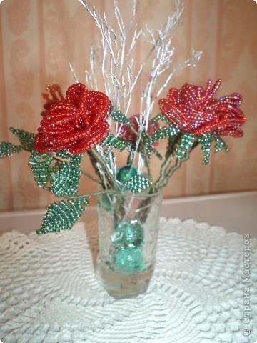 Дорогие жители страны мастеров выставляю первые свои розы. фото 4