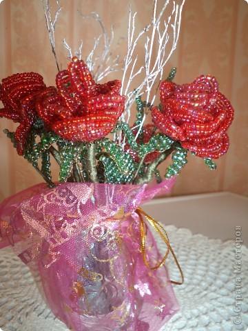 Дорогие жители страны мастеров выставляю первые свои розы. фото 6