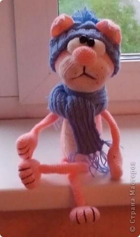 Розовый кот от Elena Gunger фото 3