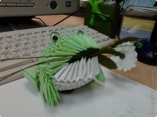Лягушка для Надюшки фото 1