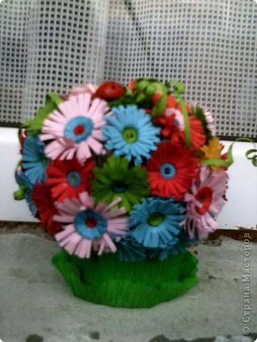 цветя фото 2
