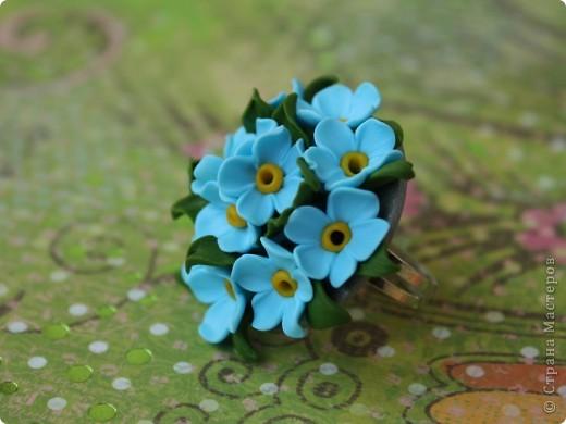 Цветы для Незабудки фото 3