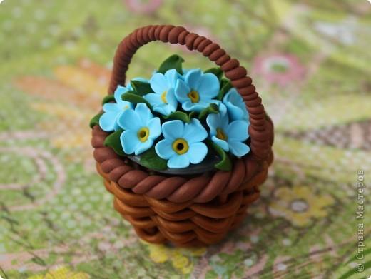Цветы для Незабудки фото 1