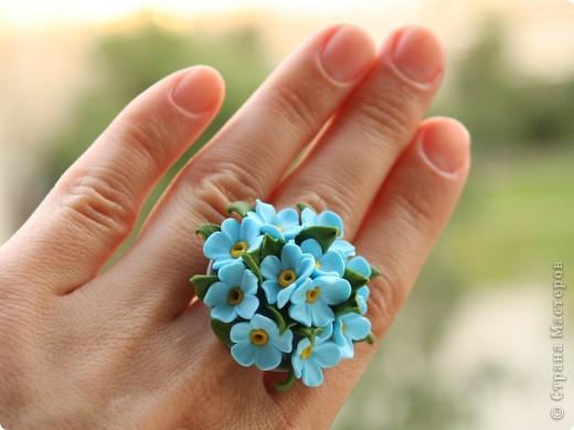 Цветы для Незабудки фото 4