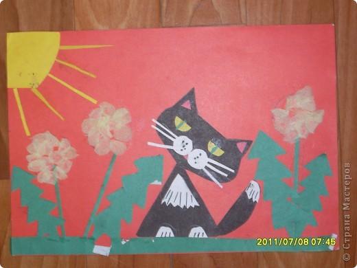 чёрный котёнок фото 1