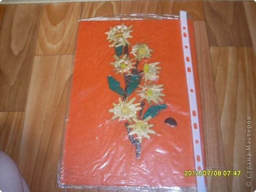 ветка с цветами фото 1