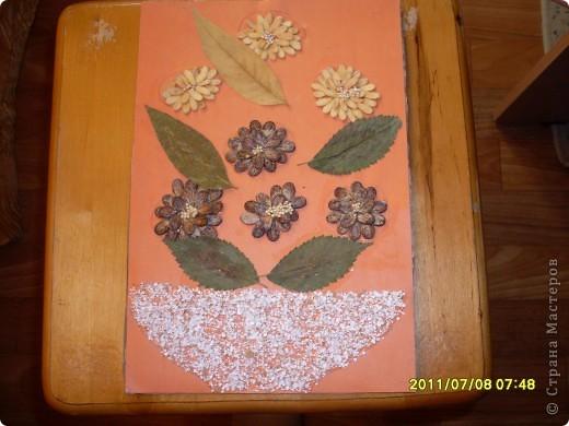 ветка с цветами фото 2