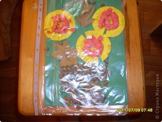 ветка с цветами фото 3