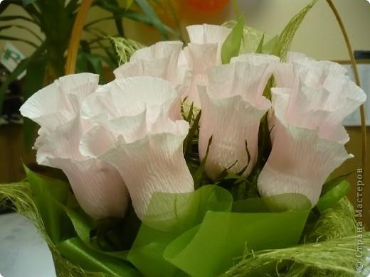 """""""Проба пера"""" ..уже давно  хотела сделать """"сладенькие"""" розы...не было подходящего материала. Оцените что получилось?! :) фото 2"""