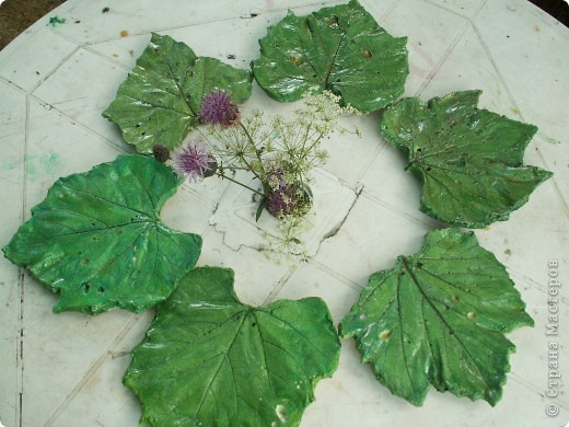 Мои первые виноградные листочки из гипса фото 1