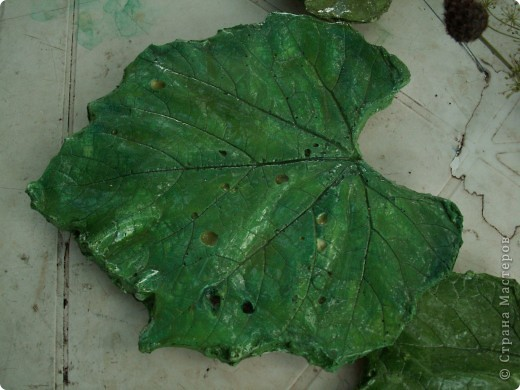 Мои первые виноградные листочки из гипса фото 2