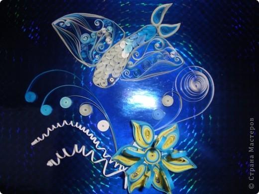 Отличительной особенностью летучих рыб являются большие грудные плавники, позволяющие рыбам выпрыгивать из воды и парить в воздухе. Окраска серо-голубая, а плавники у различных видов могут быть прозрачными, синими, зелёными, с пёстрыми пятнами и полосами. Выскакивают из воды при помощи сильных ударов хвостом. В большинстве случаев дальность полёта около 50 метров. Летучая рыба является национальным символом Барбадоса. фото 1
