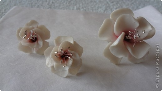 Попробовала сделать цветок саккуры. Дочери очень понравилось. Попросила сделать кольцо а к нему в комплект сережки-гвоздики фото 4