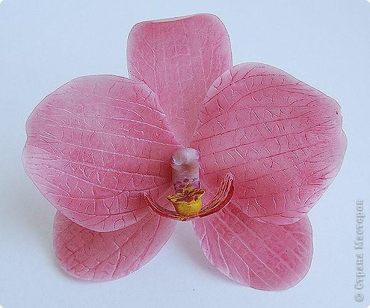 Тюльпанный цветок тюльпанного дерева, ждет своего часа сборки в веточку! :) Это чудо мы лепили со Светланой и мк засняли http://stranamasterov.ru/node/211613 фото 9