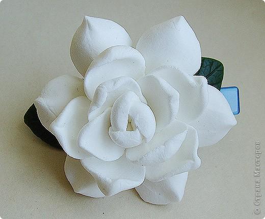 Тюльпанный цветок тюльпанного дерева, ждет своего часа сборки в веточку! :) Это чудо мы лепили со Светланой и мк засняли https://stranamasterov.ru/node/211613 фото 12