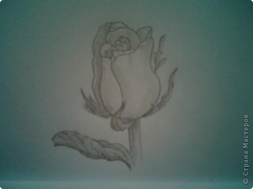 карандашом фото 1