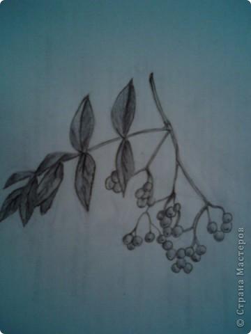 карандашом фото 3