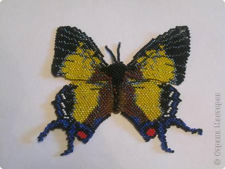 """Бабочка """"Полиура Дехана"""" выполнена мозаичным плетением, а тельце жгут с прибавлением. Она получалась долго, но вылупилась из куколки такой вот КРАСАВИЦЕЙ!!! фото 1"""