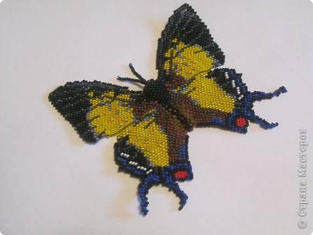 """Бабочка """"Полиура Дехана"""" выполнена мозаичным плетением, а тельце жгут с прибавлением. Она получалась долго, но вылупилась из куколки такой вот КРАСАВИЦЕЙ!!! фото 2"""