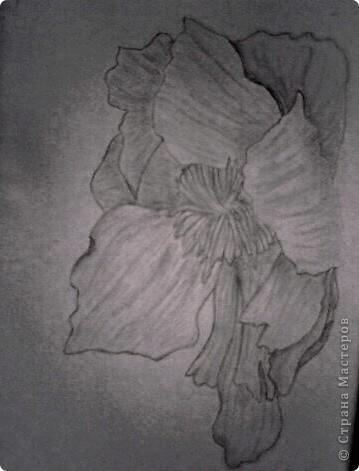 карандашом фото 4