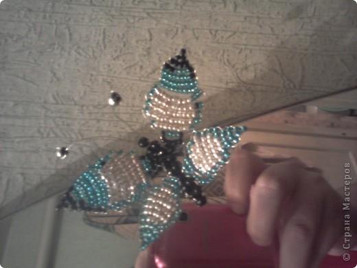 моя первая работа! чудесная бабочка! фото 1