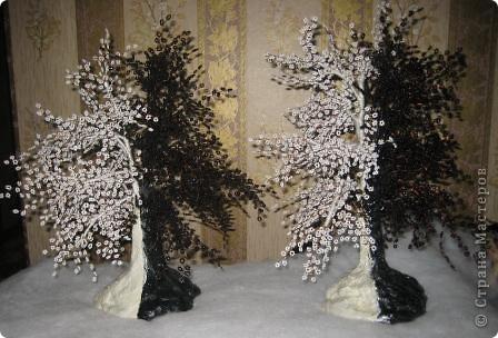 деревья..... фото 1