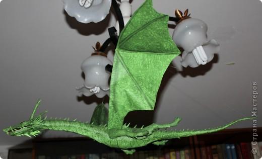 Драконы фото 3