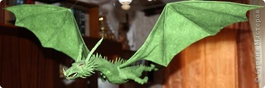 Драконы фото 7