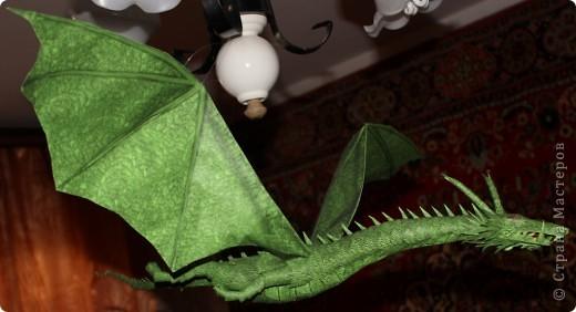 Драконы фото 9