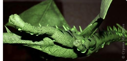 Драконы фото 11
