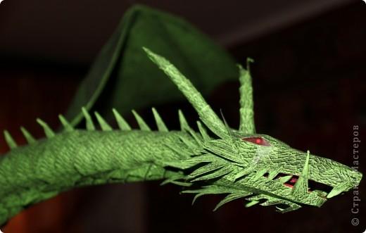 Драконы фото 12