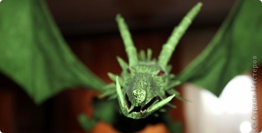 Драконы фото 13